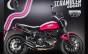 Ducati Scrambler Shoking (2)